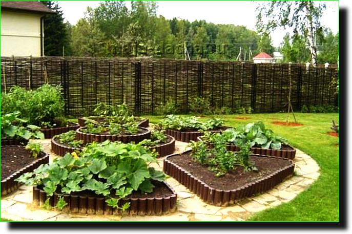 Как обустроить грядки в огороде своими руками фото