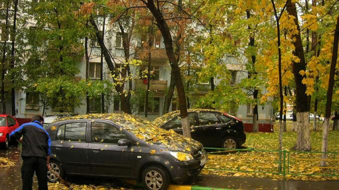 uborka-listvy-s-gazonov