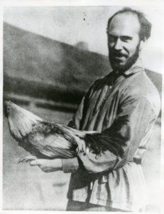 serebrovskij