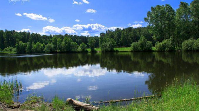 салтыковский лес
