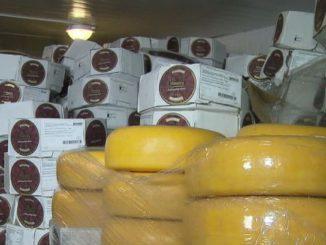 Семьдесят тонн контрафактного сыра