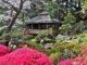 о японских садах