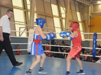 боксёрский турнир
