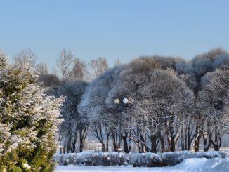 Этап Зима