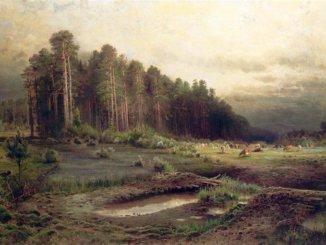 пейзаж лосиный остров в сокольниках