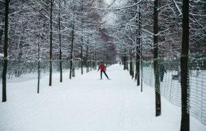лыжные маршруты