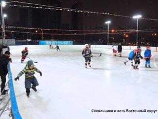 путешествие на коньках