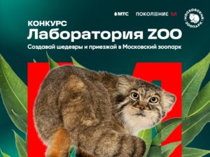 лаборатория Zoo